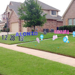 Large Blue and Pink Letters in Front Yard - Rattle Yard Signs