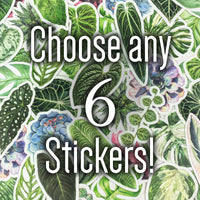 Choose 6 Stickers