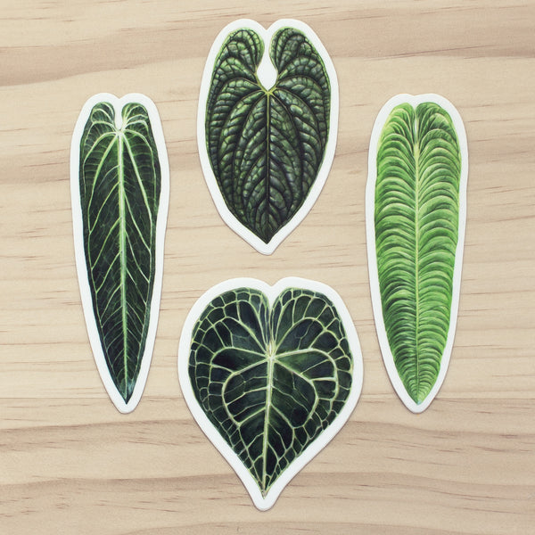 Anthurium Sticker Set