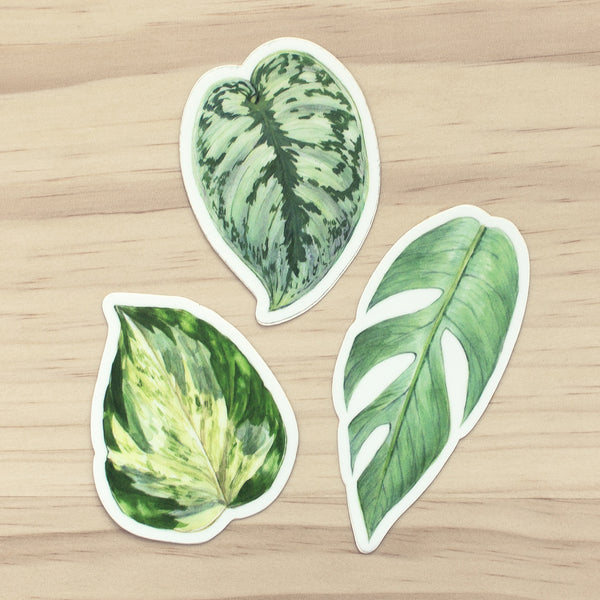 Pothos Sticker Set