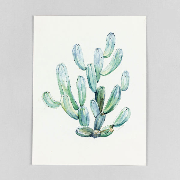 Myrtillocactus geometrizans - Original Watercolor