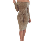 Bodycon Off The Shoulder Long Sleeve Party Dress