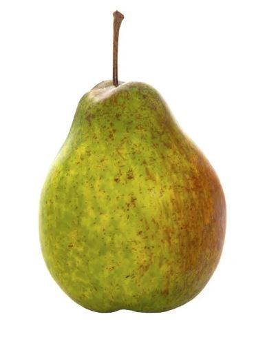 Pear Single Green