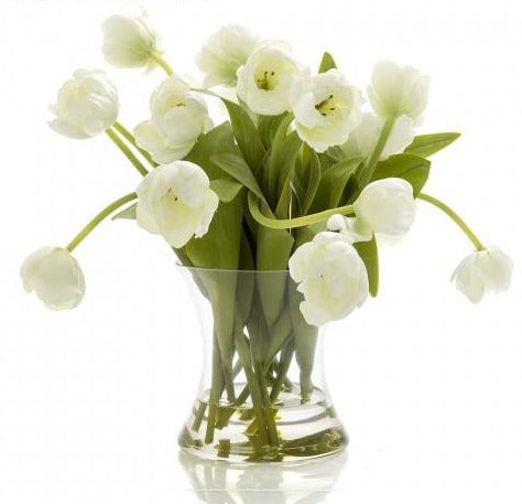 Tulip in Water in Glass Vase White