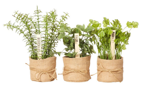 Artificial Herbs in Burlap
