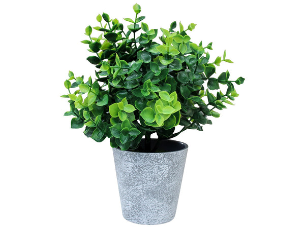 Artificial Boxwood Plant in Grey Pot