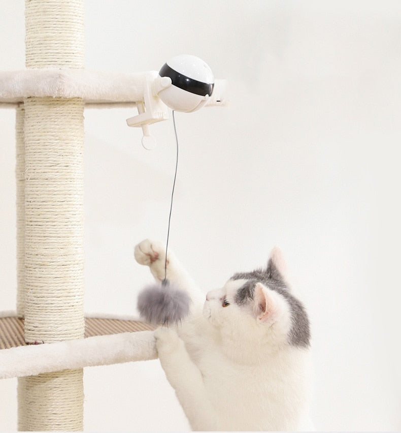 Automatic Lifting Ball Creative Funny Pet Products For Cats