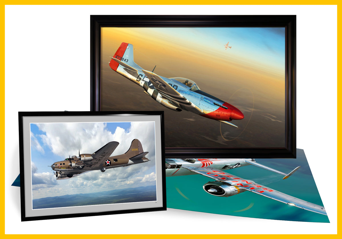 Ron Cole Framed & Unframed Prints: Warbirds of World War II