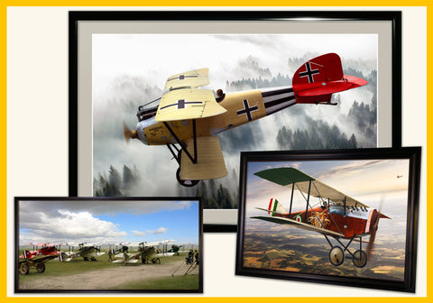 World War 2 Aviation Art & Historic Aircraft Relic Displays - Ron Cole