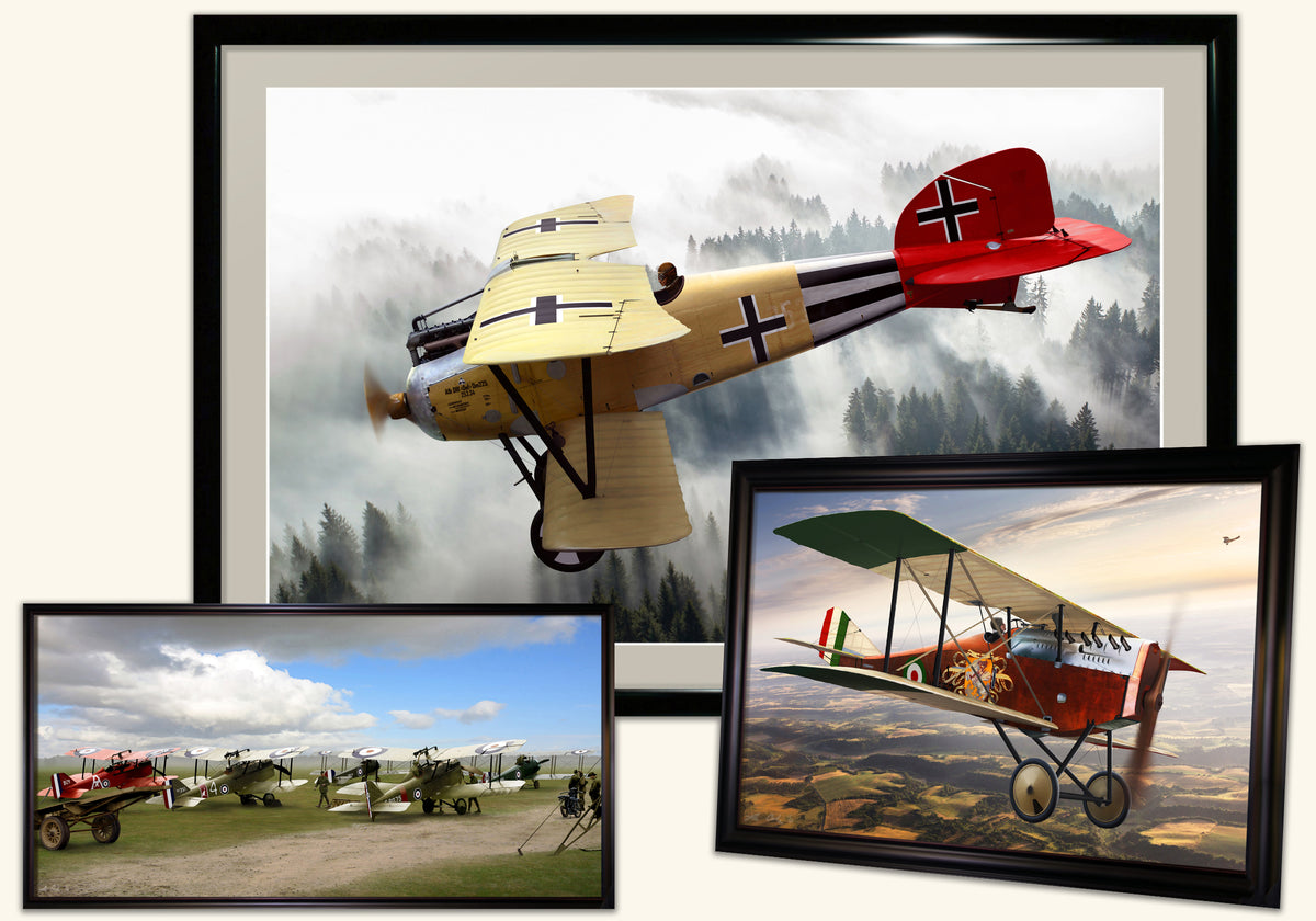 Ron Cole: Warbirds of the Great War