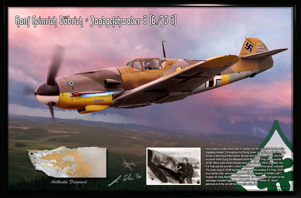 Luftwaffe 'Ace' Hans Dobrich Messerschmitt BF 109 F-4 Relic Display