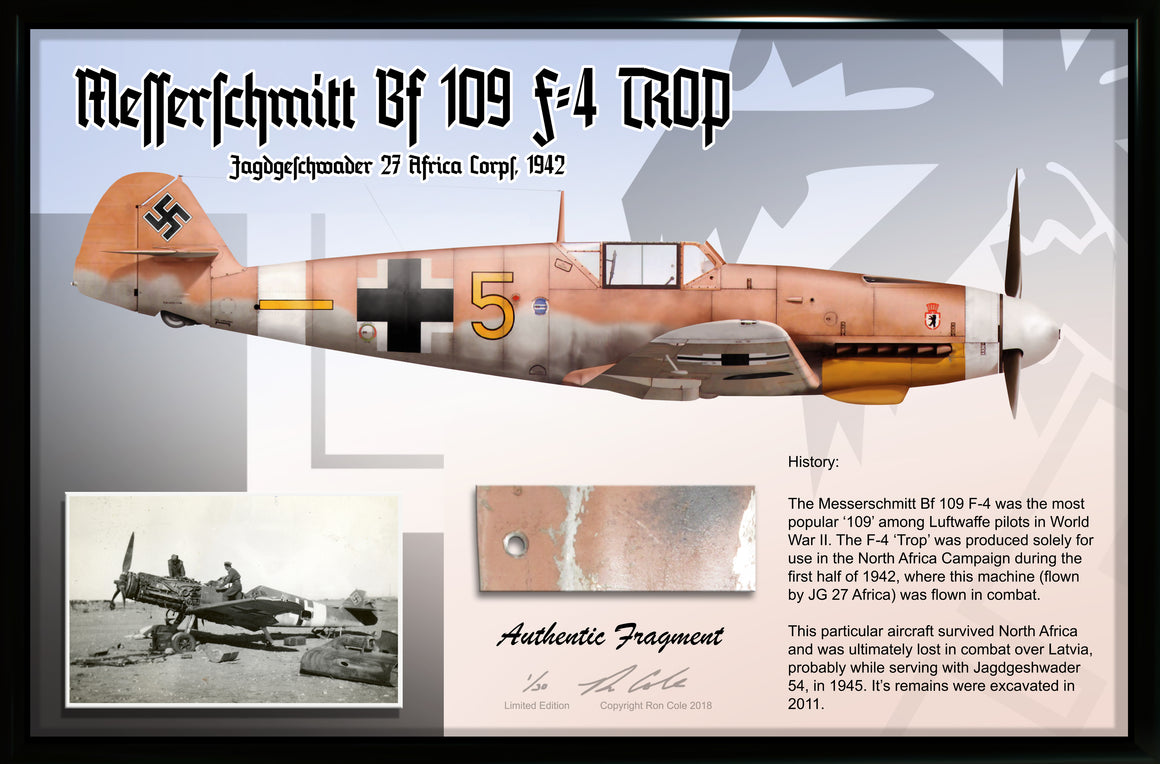 Luftwaffe Messerschmitt Bf 109 F-4 TROP Combat Loss Relic Display