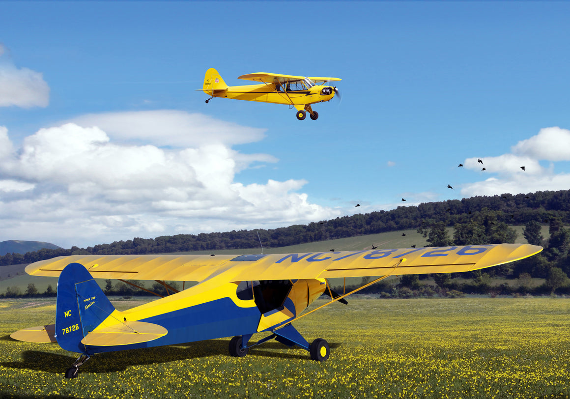 From Piper Cub to Super Cub Special - Cole's Aircraft - 1