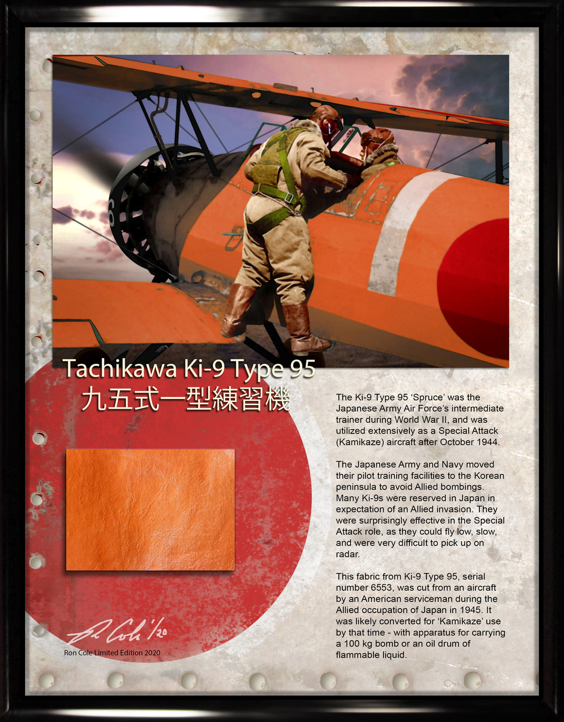 Japanese Air Force Ki-9 Type 95 Relic Display