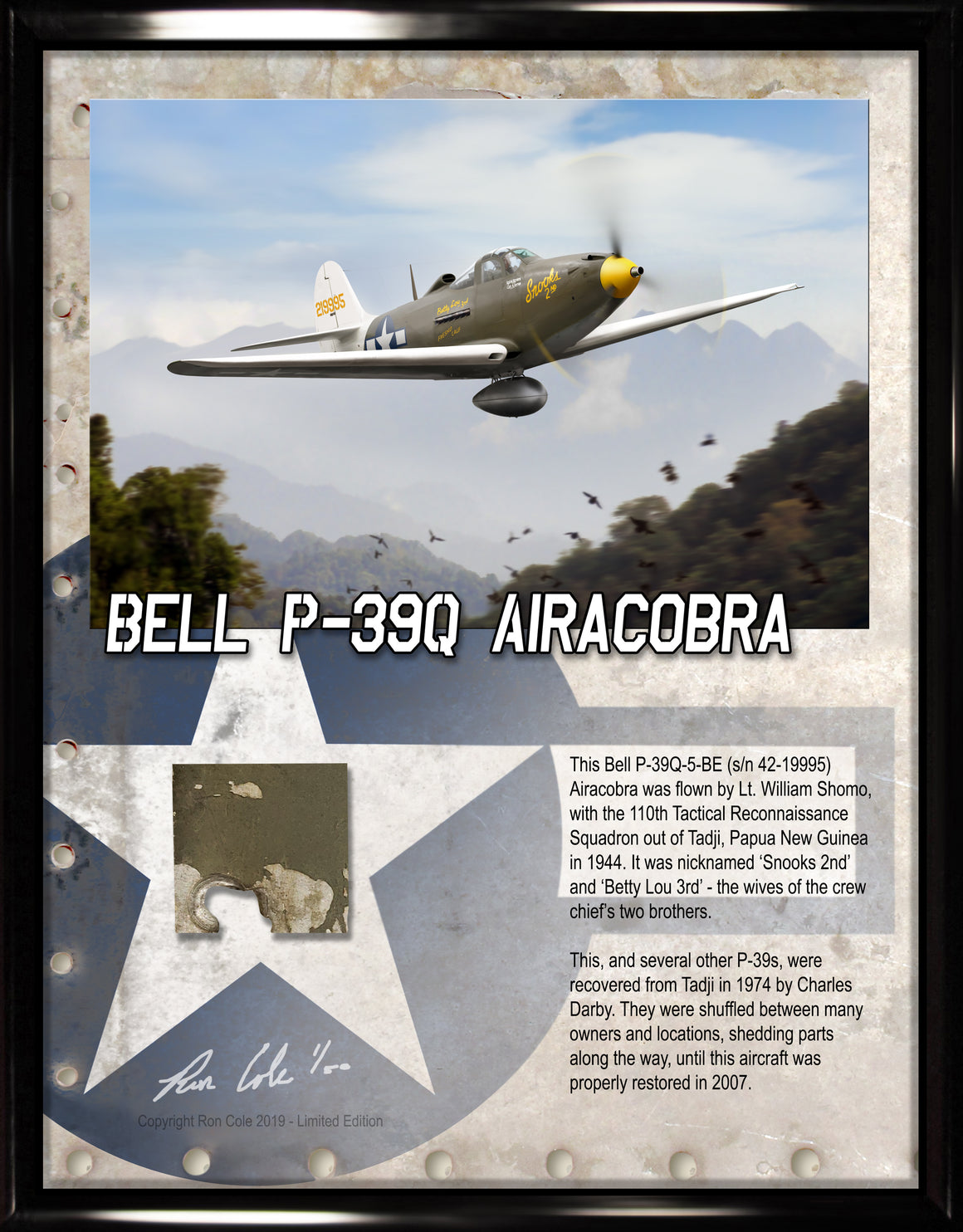 Bell P-39Q Airacobra South Pacific Theater Relic Display