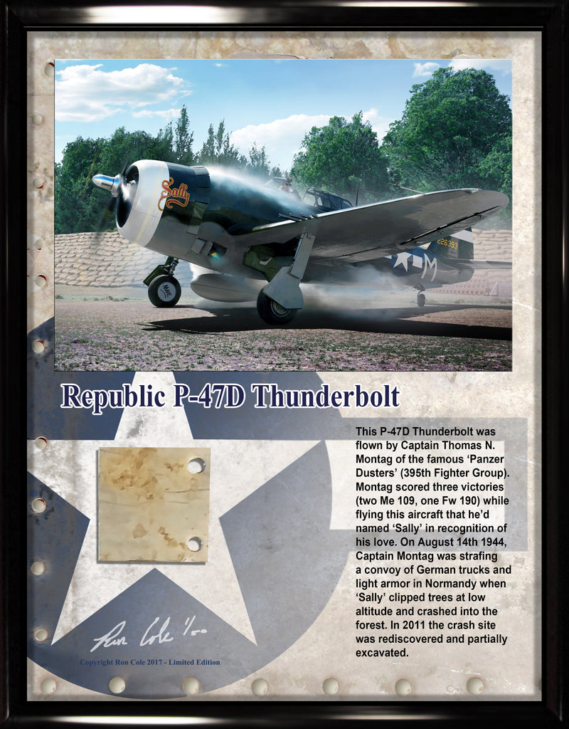 P-47 Razorback Thunderbolt Relic Display