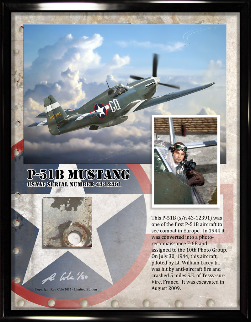 P-51B / F6B Mustang Relic Display