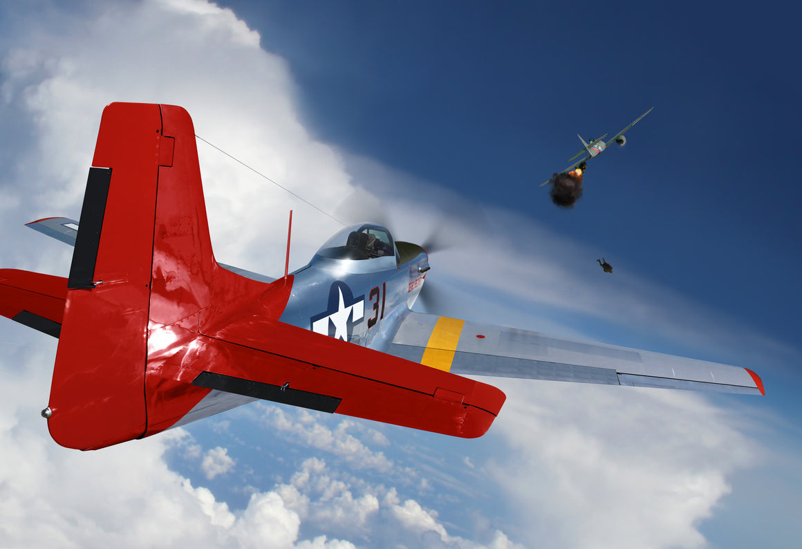 P-51D Tuskeegee Airman Victory - Cole's Aircraft - 1