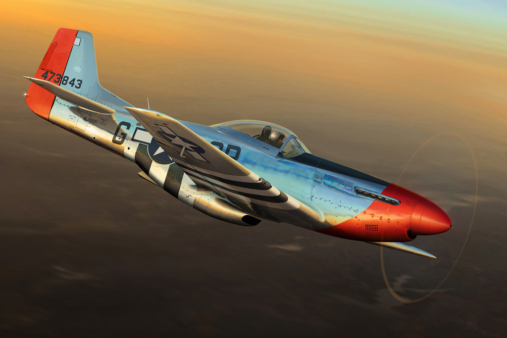 P-51D Mustang 'Red Nose' - Cole's Aircraft - 1