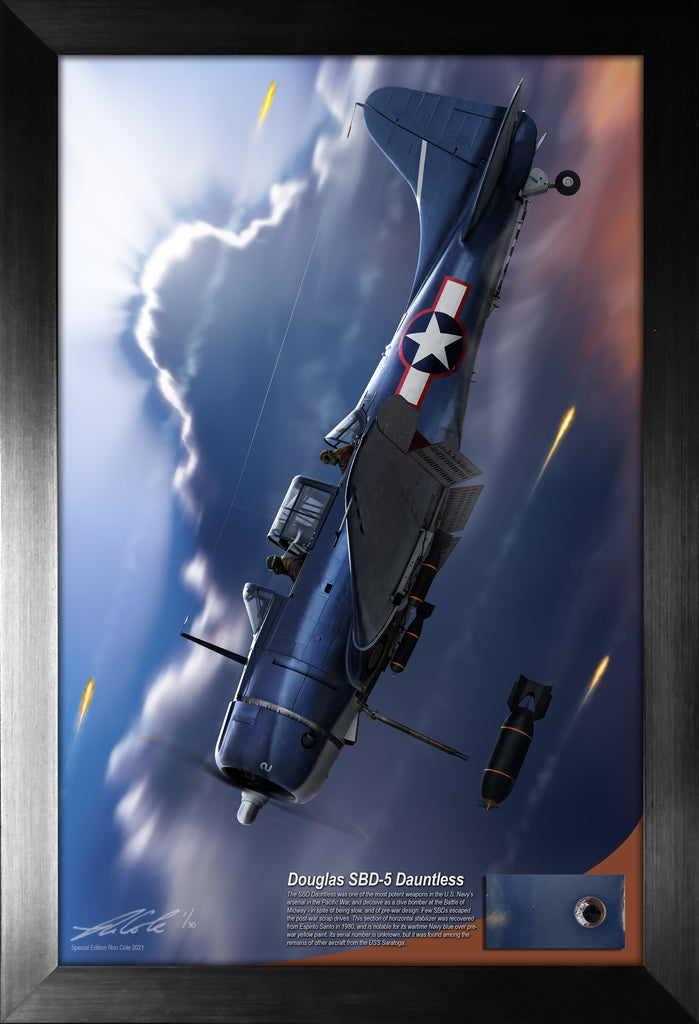 Douglas SBD Dauntless Relic Display by Ron Cole