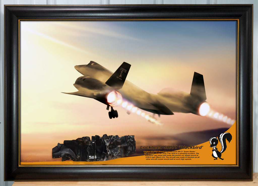 SPECIAL 24x36-inch Lockheed SR-71 Blackbird Black-Painted Exterior Titanium Relic Display