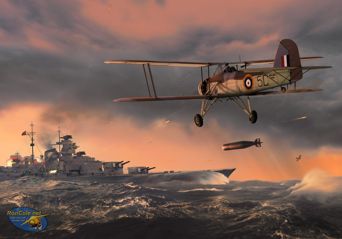 Avenging the Hood: Bismarck, and Swordfish of 818 Squadron RN - Cole's Aircraft - 1