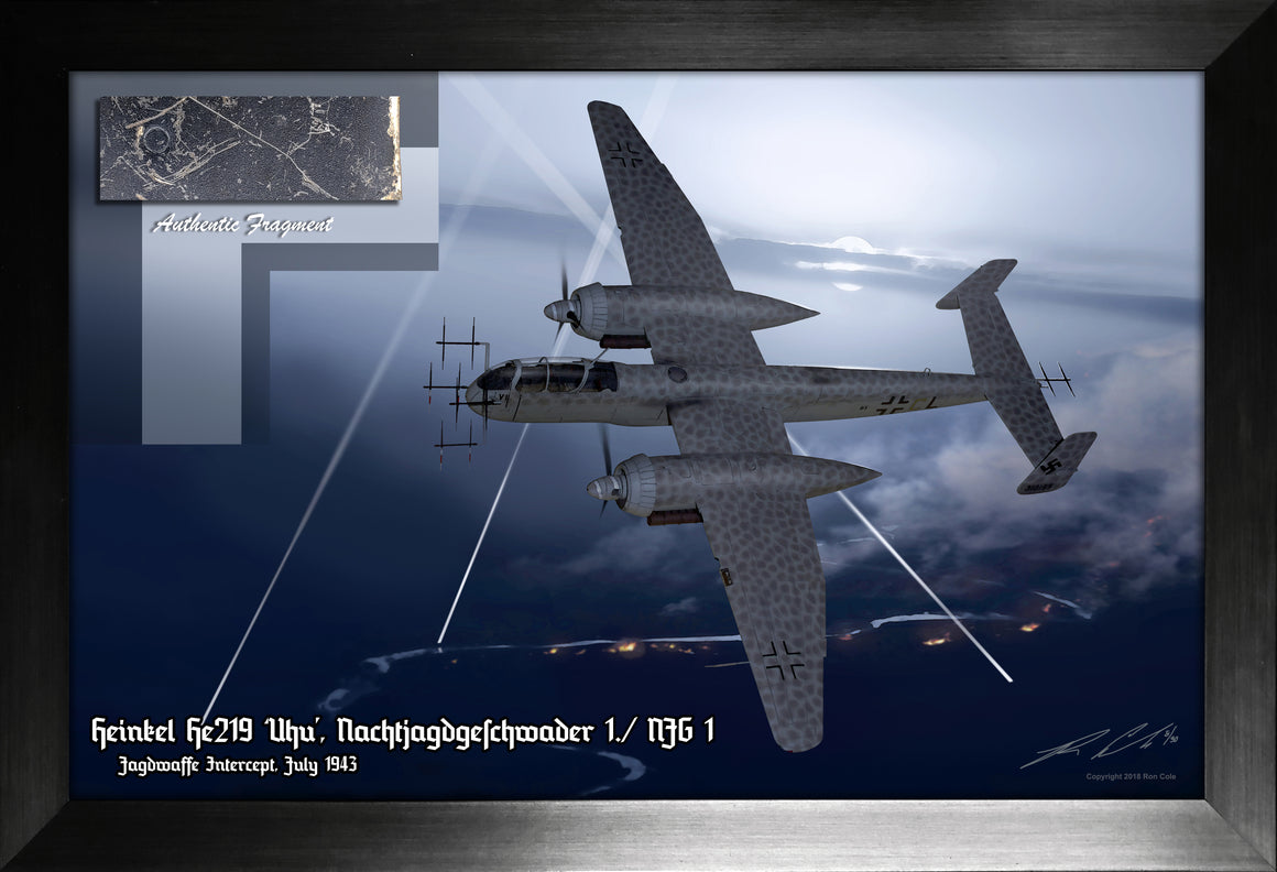 Luftwaffe Night Fighter Heinkel He 219 'Uhu' Relic Display by Ron Cole