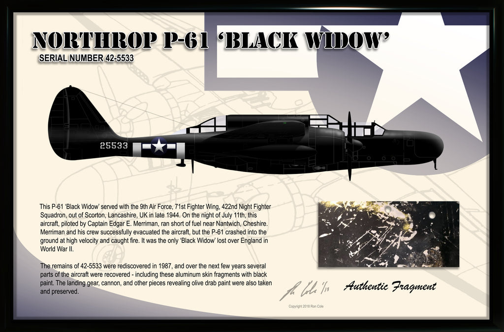 P-61 Black Widow Night Fighter Relic Display