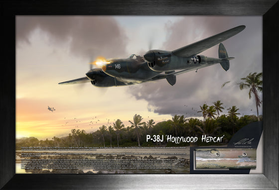 Lockheed P-38 Lightning 'Hollywood Hepcat' Relic Display by Ron Cole