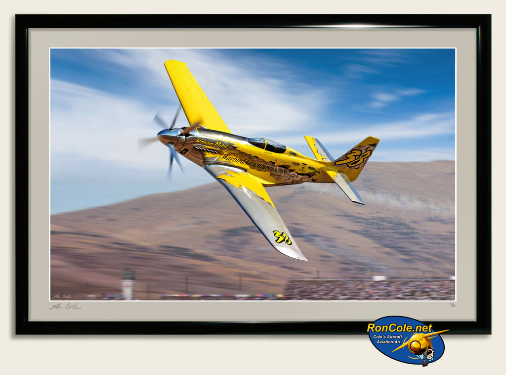 2014 P-51 XR 'Precious Metal' Griffon Powered Reno Unlimited Class Racer - Cole's Aircraft - 2