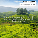 darjeeling tea leaf