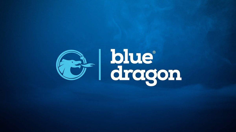 Partner: Blue Dragon - EU Dronebewijs