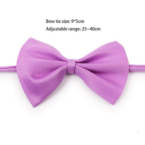 Plain Bow Tie Collar for Cat Dog