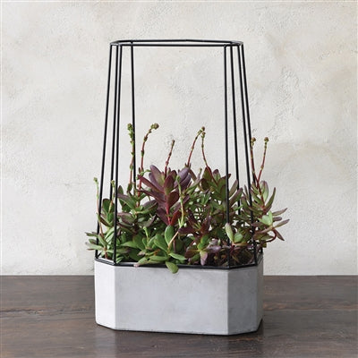 Indio Cement Planter - Wide