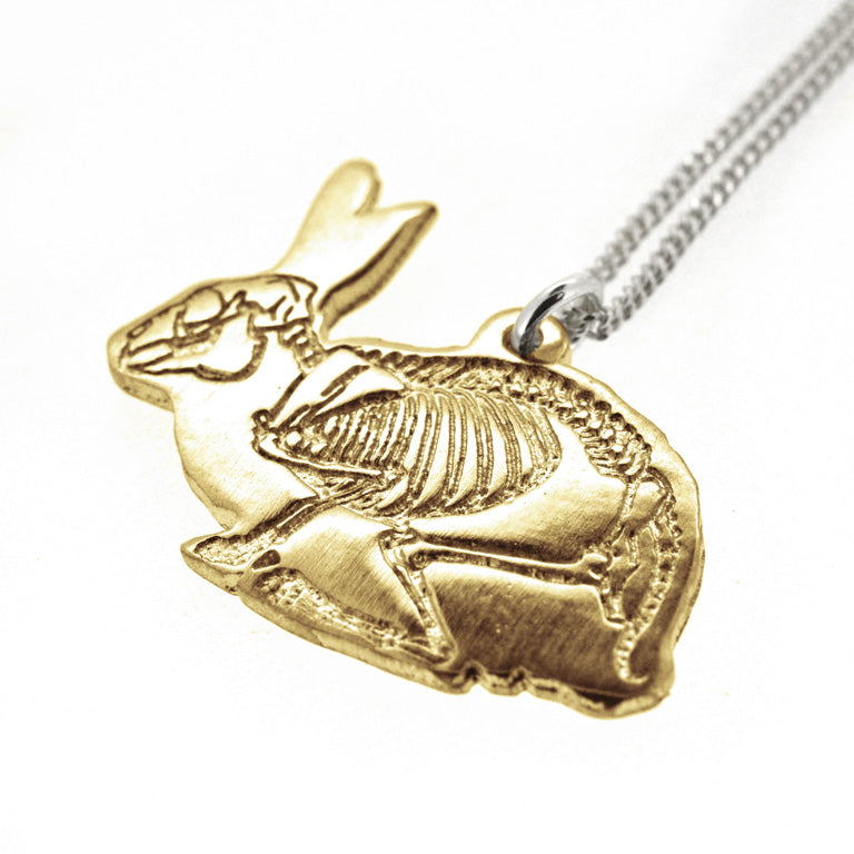 X-Ray Rabbit - Bronze