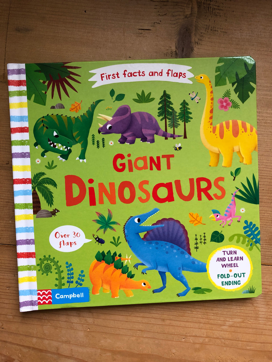 First Facts & Flaps: Giant Dinosaurs