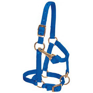 Weaver Nylon Halter 5/8in Adjustable Chin and Throat Latch Mini Horse Blue