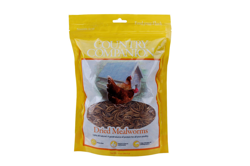 Country Companion Mealworms 10oz