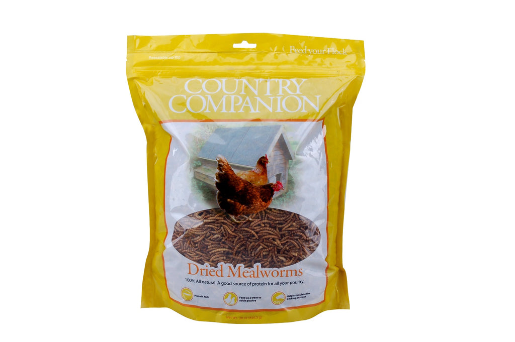 Country Companion Mealworms 30oz