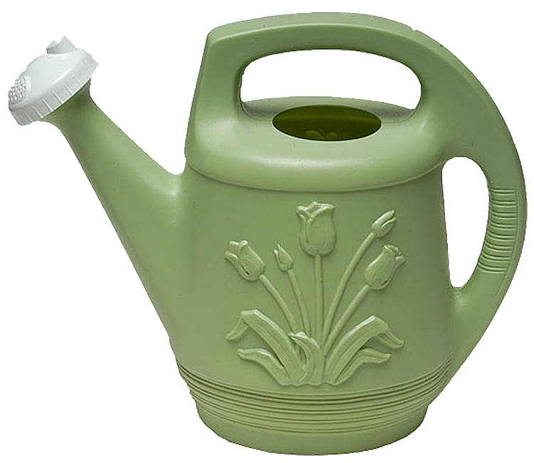 Watering Can Plastic 2 Gal