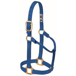 Original Non-Adjustable Halter Large Horse/Young Draft Blue
