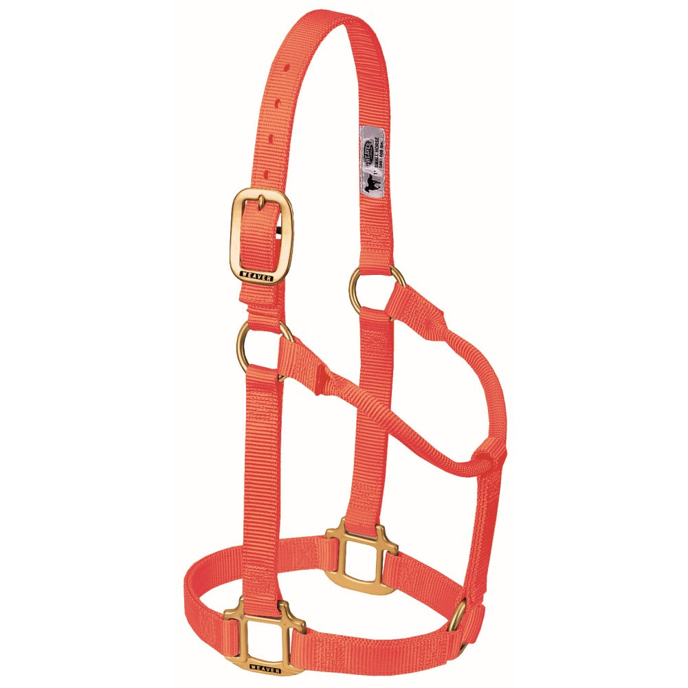 Original Non-Adjustable Halter Large Horse/Young Draft Blaze Orange