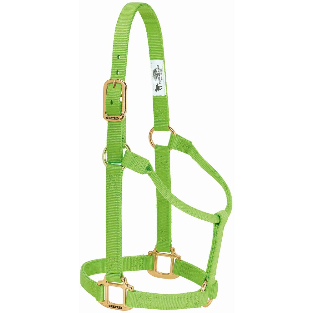 Original Non-Adjustable Halter Average Horse Lime