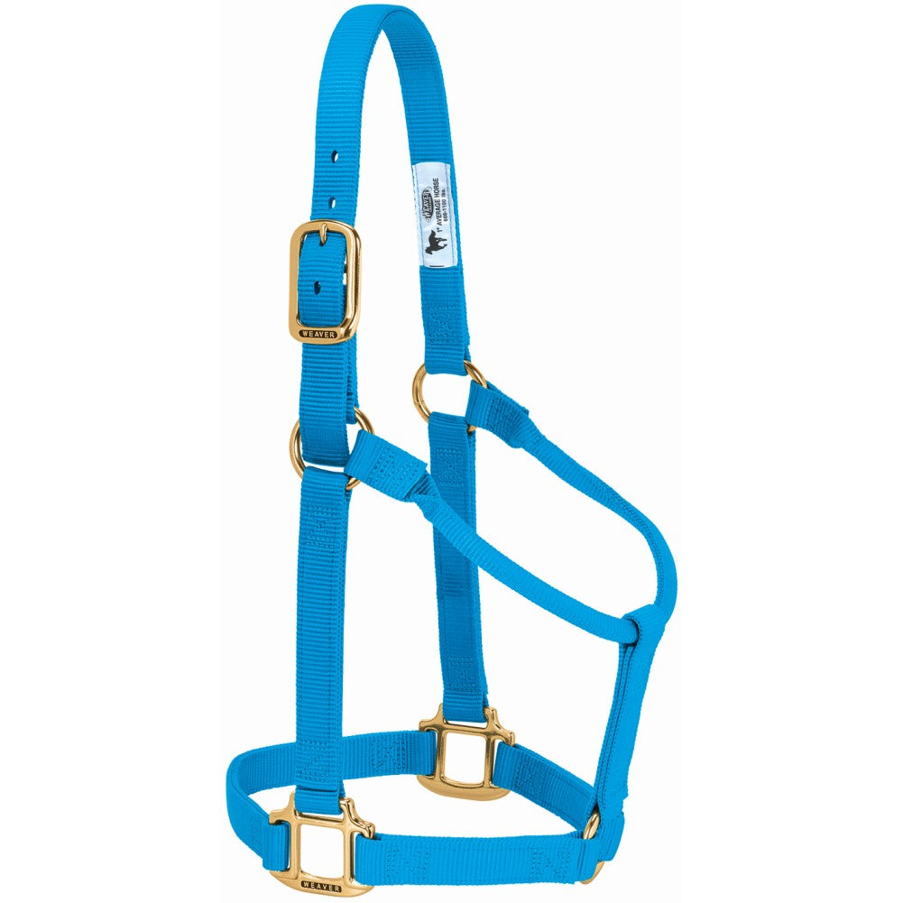 Original Non-Adjustable Halter Average Horse Hurricane Blue