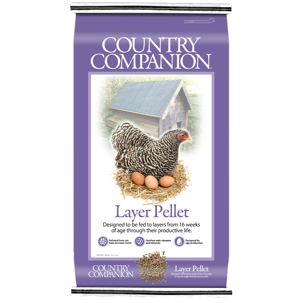 Country Companion Layer Pellet Chicken Feed 50-Lbs