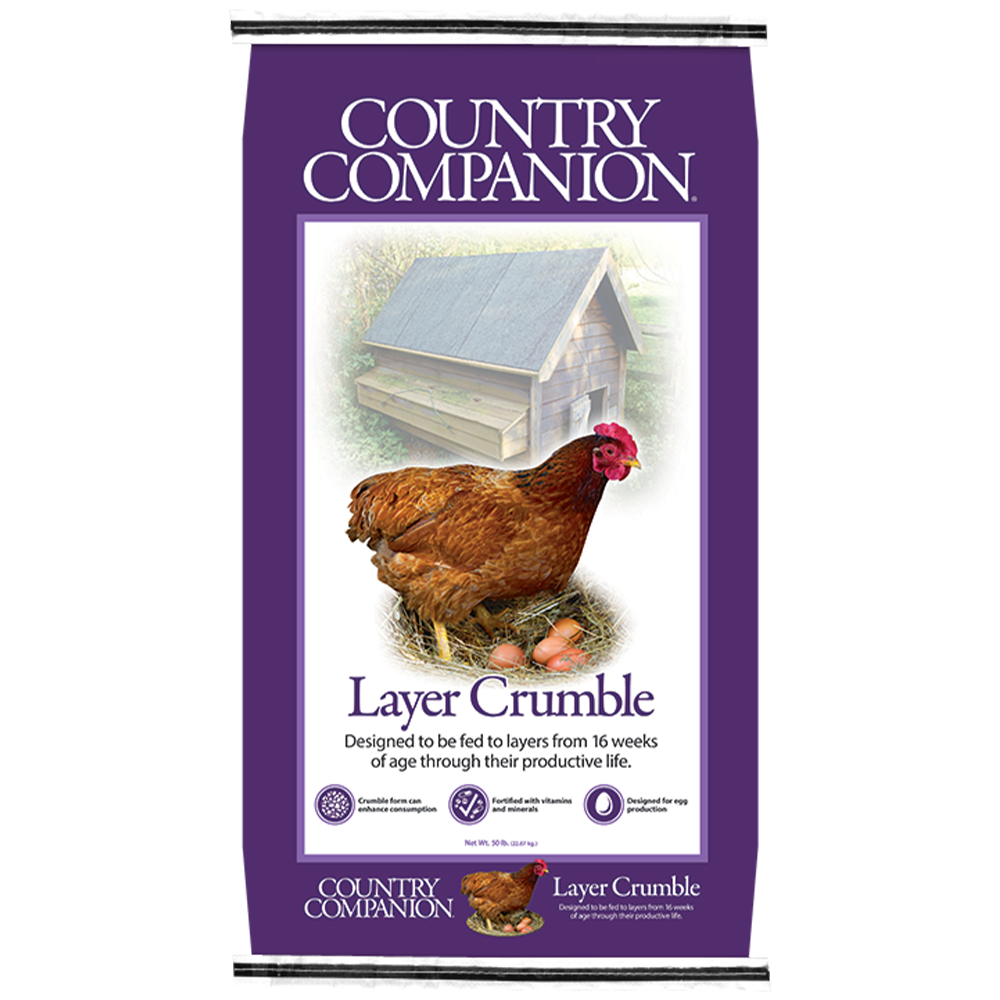Country Companion Layer Crumble Chicken Feed 50-Lbs