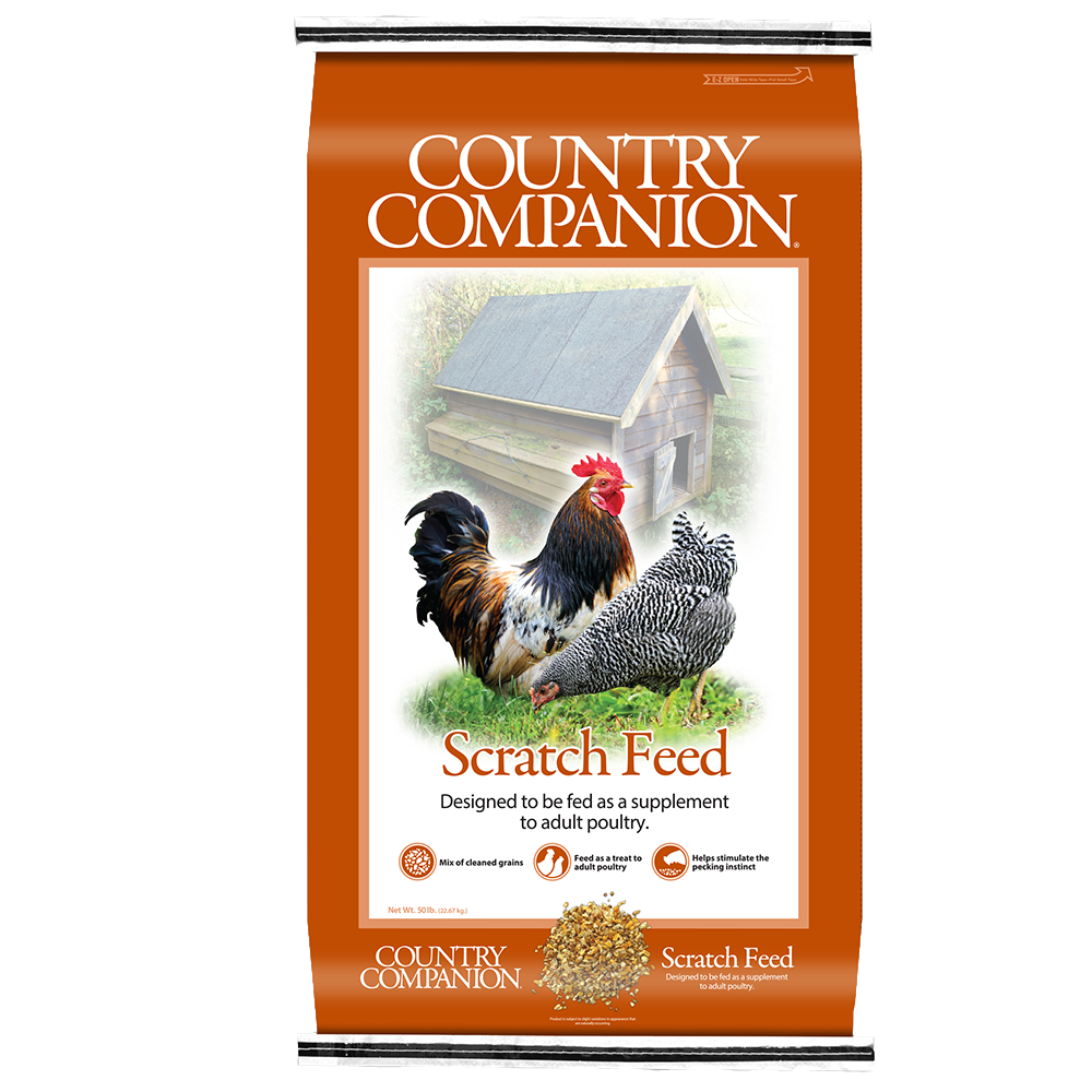 Country Companion Scratch Grains Chicken Feed 50-Lbs