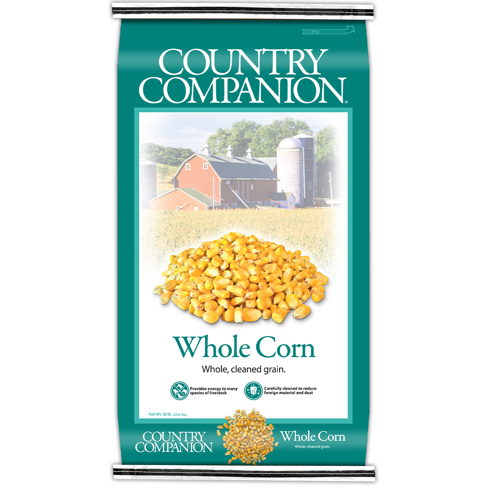 Nutrena Country Companion Whole Corn 50-lbs