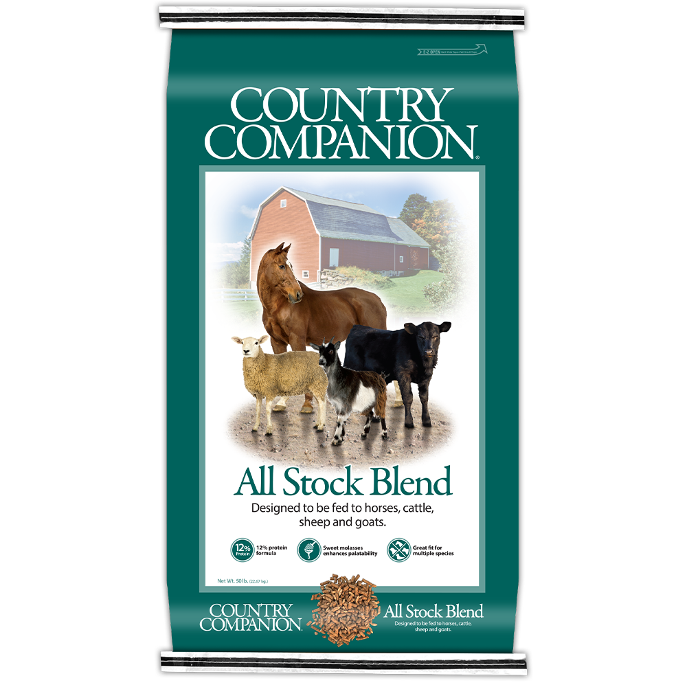 Country Companion All Stock 12% Textured Feed 50-Lbs