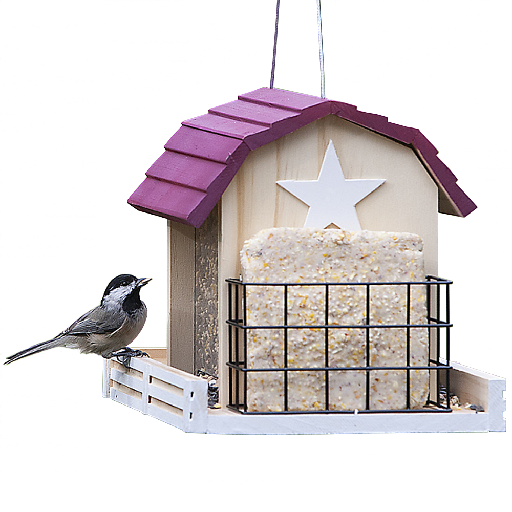 Perky-Pet Star Barn Wild Bird Feeder 2-Pound Seed Capacity
